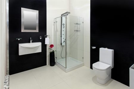 Modern bathroom with a shower panel