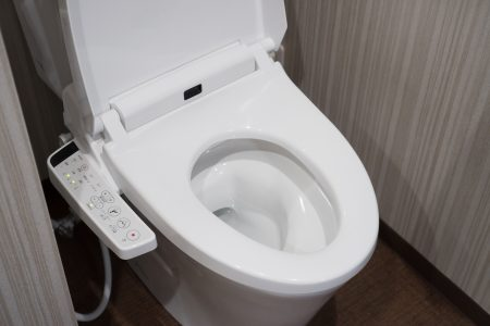 Heated toilet seat