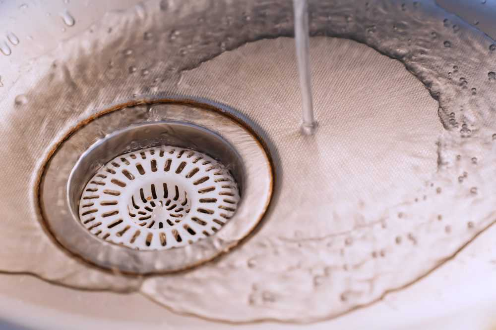 5 Best Kitchen Sink Strainers (2020 Reviews)