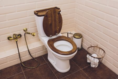 Best Wooden Toilet Seats of 2020