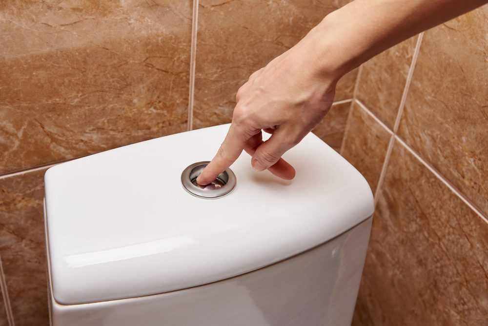 9 Types of Toilet Flush Systems (Pros and Cons) - Sensible Digs