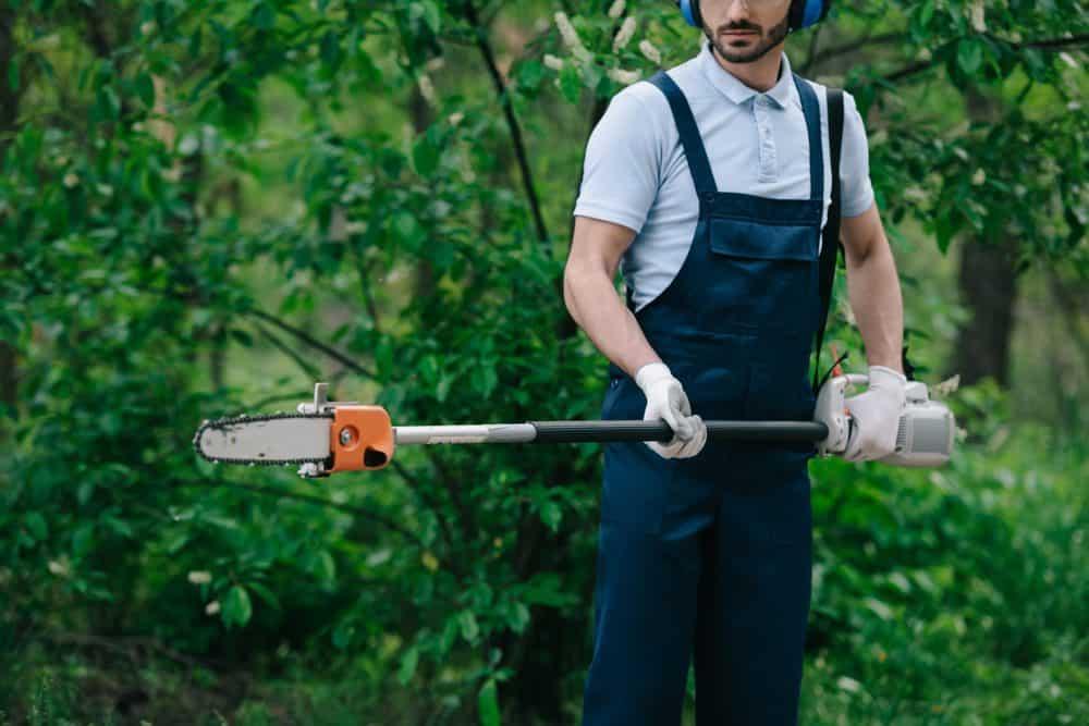 Man gardening with a pole saw