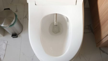 Modern toilet seat with bidet