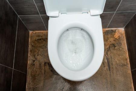 Flushing toile