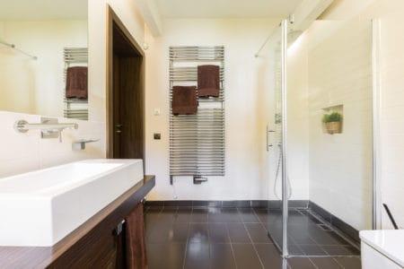 Glass roll-in shower in elegant bathroom