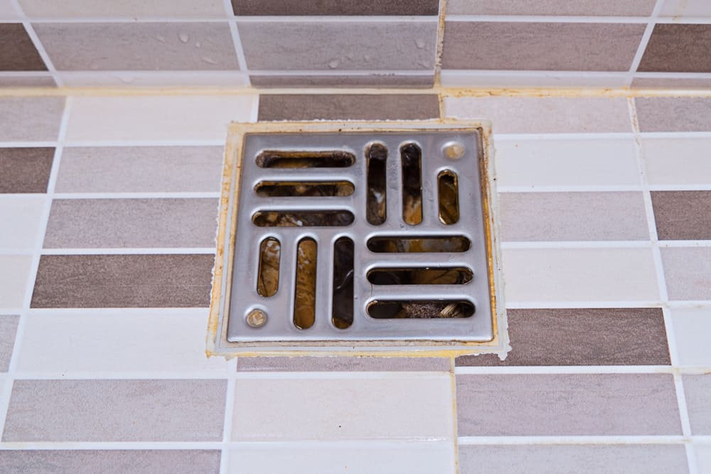 Dirty stainless steel shower drain