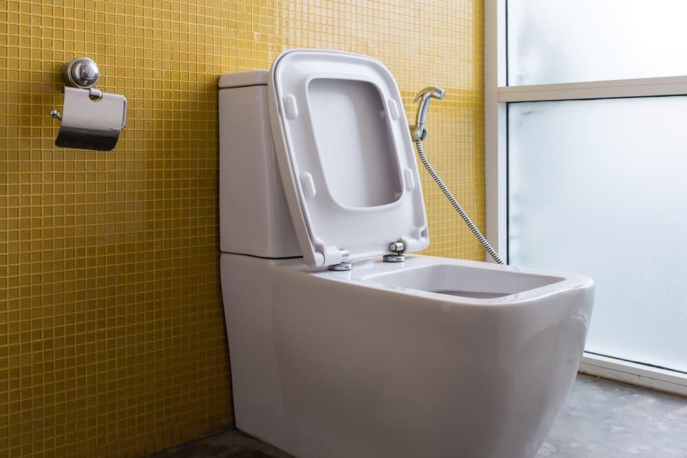 square toilet seat