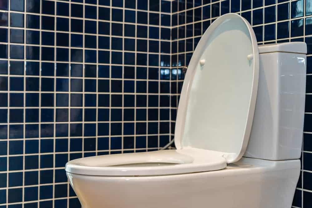 Toilet seat bowl in bathroom interior