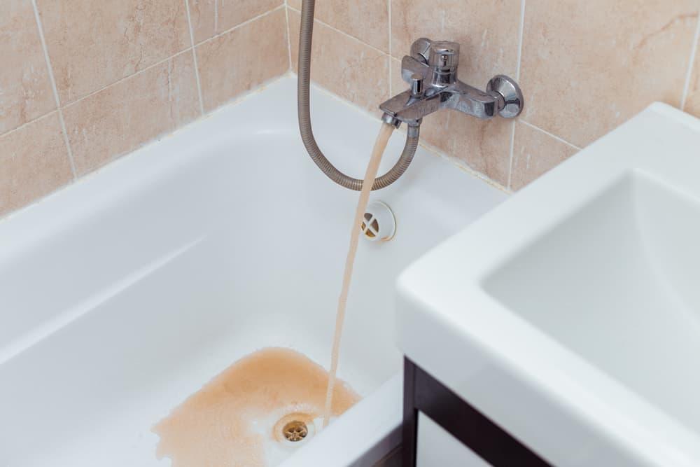 water bacteria